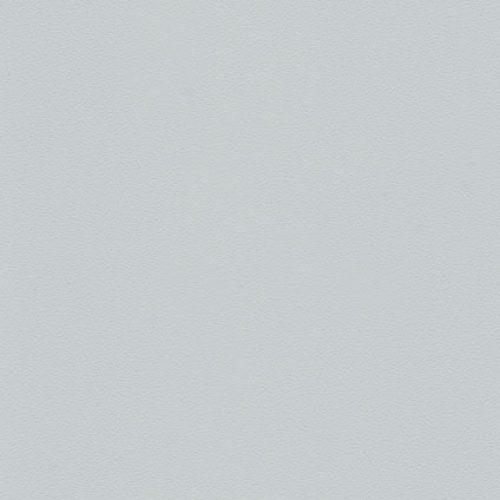 Светло-серый 5013
